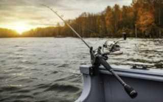Как выбрать удочку начинающему рыбаку