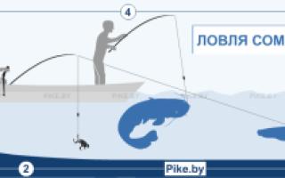 Рыбалка на квок все тонкости видео