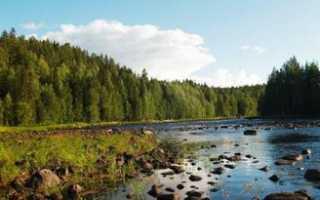 Куда поехать на рыбалку в карелии