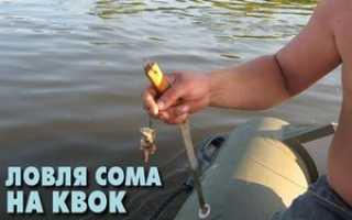 Ловля сома на квок с лодки видео